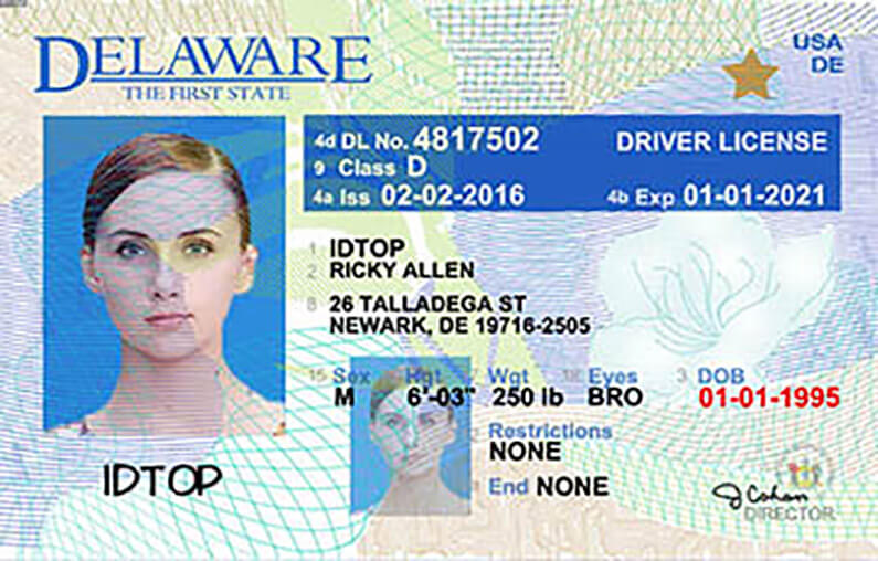 delaware motor vehicle drivers license renewal