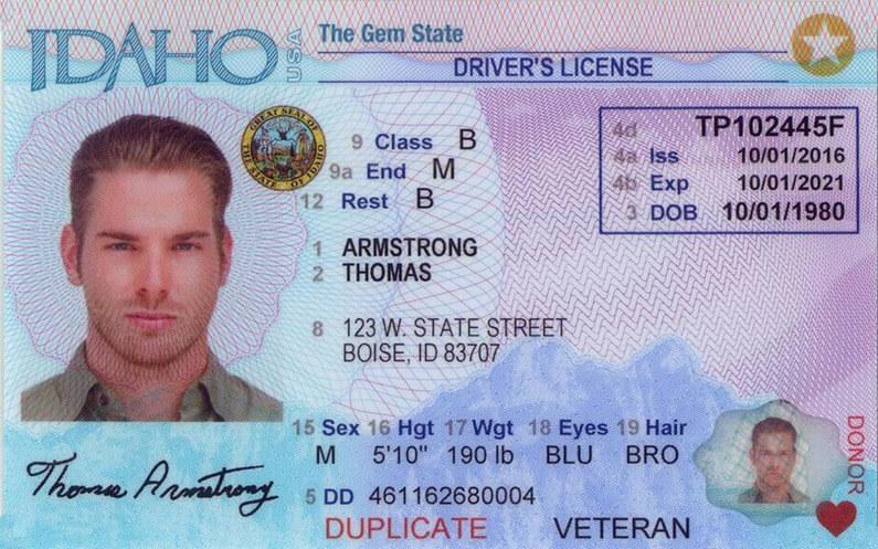 Idaho Driver's License Application and Renewal 2020