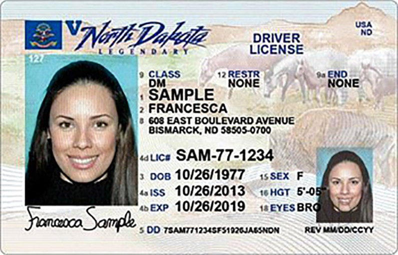 renew ca drivers license over 70