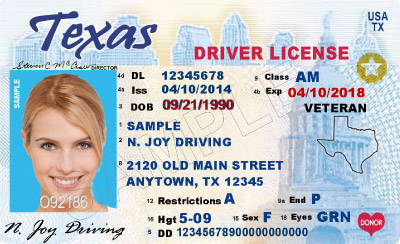 error on drivers license texas