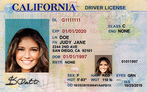 CA DMV driver's license